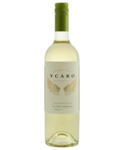 koop een fles Ycaro Sauvignon blanc