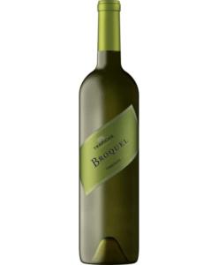 koop een fles Trapiche Broquel Torrontés